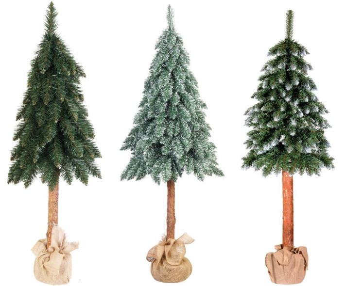 Choinki Co Musisz Wiedziec O Drzewkach Q A Leroy Merlin