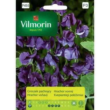 Groszek pachnący NIEBIESKI nasiona tradycyjne 2 g VILMORIN