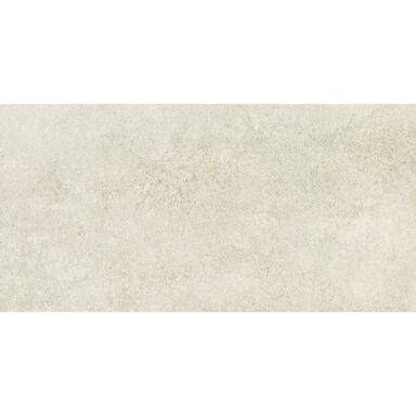 Gres szkliwiony PUEBLO GREY 59.8 X 119.8  ARTE