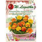 Aksamitka rozpierzchła BONANZA SERIES nasiona tradycyjne 0.5 g W. LEGUTKO