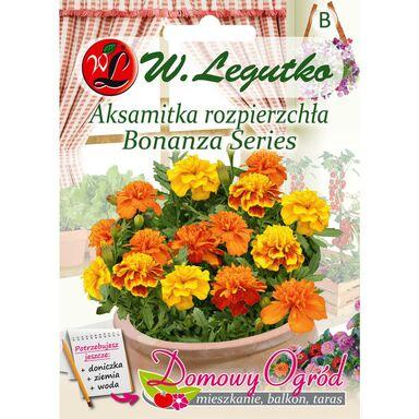 Nasiona kwiatów BONANZA SERIES Aksamitka rozpierzchła W. LEGUTKO
