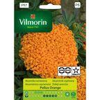 Aksamitka wzniesiona POLLUX ORANGE nasiona tradycyjne 1 g VILMORIN