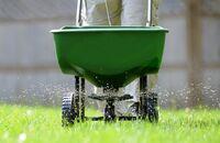 Nawożenie trawnika – jak zadbać o trawę przez cały rok?