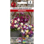 Aster chiński na kwiat cięty MIESZANKA W. LEGUTKO