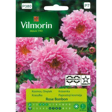 Kosmos ROSE BONBON nasiona tradycyjne 0.5 g VILMORIN