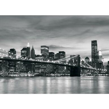 Fototapeta BROOKLYN BRIDGE 312 x 219 cm