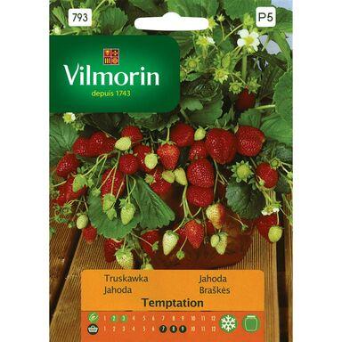 Nasiona owoców TEMPTATION Truskawka VILMORIN