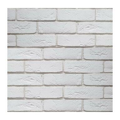 Kamień elewacyjny betonowy Lateris biały 21 x 6,6 cm 0.34m2 Steinblau