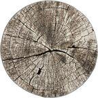 Dywan okrągły Mauritius szary imitacja pnia śr. 120 cm