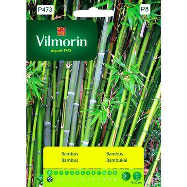 Bambus nasiona tradycyjne 1 g VILMORIN