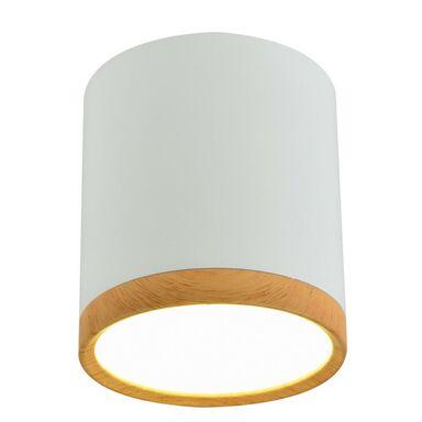 Oprawa natynkowa TUBA IP20 śr. 6.8 cm biała LED CANDELLUX