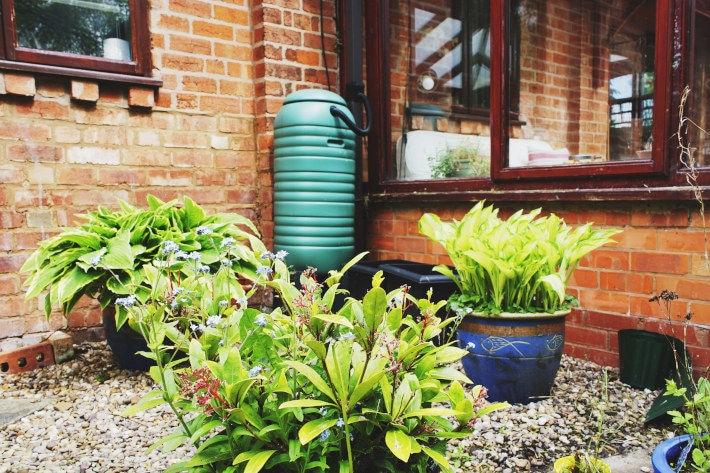 Zbiornik na deszczówkę w ogródku