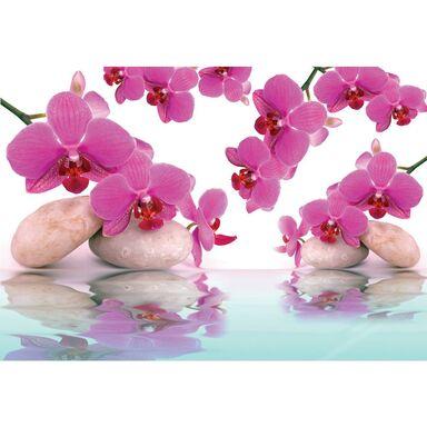 Fototapeta Orchid Zen 152 x 104 cm