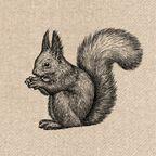 Serwetki eko Squirrel 33 x 33 cm 20 szt.