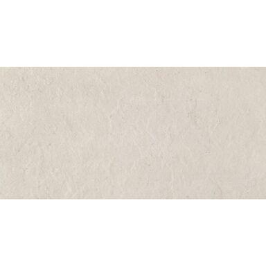 Glazura GWINEA GREY 29.8 X 59.8 ARTE