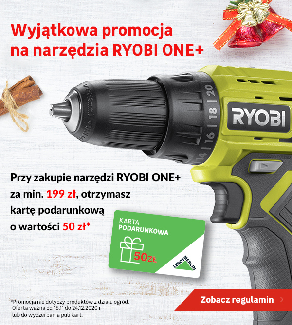 Promocja RYOBI ONE+