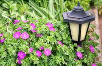 Oświetlenie zewnętrzne domu – jak je dobrze zaplanować?