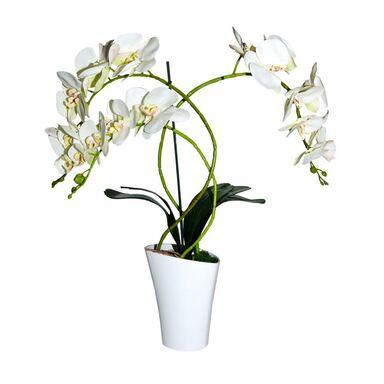 Storczyk sztuczny w doniczce 67 cm biały 3 pędy