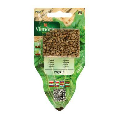 Szpinak PARYS nasiona tradycyjne 6 g VILMORIN