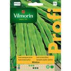 Fasola szparagowa MISTICA nasiona tradycyjne 10 g VILMORIN