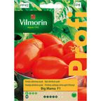 Pomidor szklarniowy BIG MAMA nasiona tradycyjne 0.1 g VILMORIN