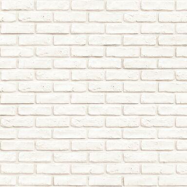 Kamień dekoracyjny gipsowy Murro Bianco 55 x 14 cm 0.48m2 Incana