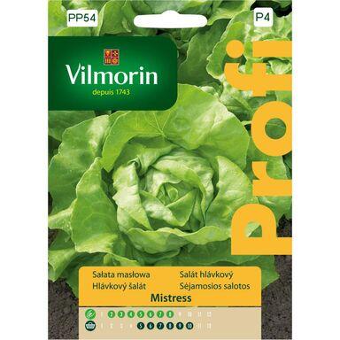 Sałata głowiasta masłowa MISTRESS nasiona tradycyjne 0.5 g VILMORIN