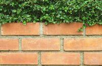 Ogrodzenie z klinkieru – co warto wiedzieć?