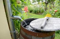 Zbieramy wodę deszczową