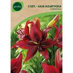 Lilia azjatycka RED 3 szt. cebulki kwiatów GEOLIA
