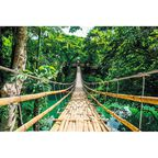 Plakat JUNGLE BRIDGE 91.5 x 61 cm