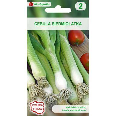 Nasiona warzyw LONG WHITE ISHIKURA Cebula siedmiolatka W. LEGUTKO