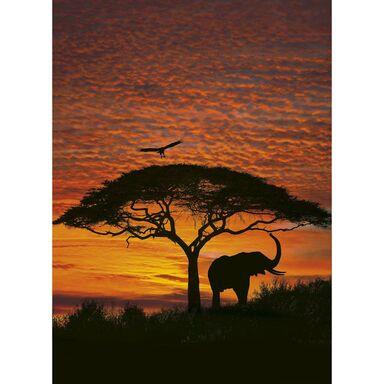 Fototapeta AFRICAN SUNSET 194 x 270 cm KOMAR