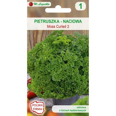 Pietruszka naciowa MOSS CURLED 2 W. LEGUTKO