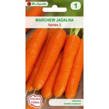 Marchew NANTES 3 (NANTEJSKA) nasiona tradycyjne 5 g W. LEGUTKO