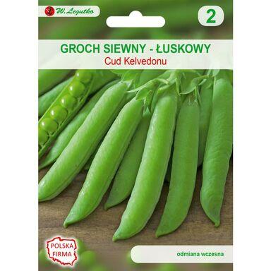 Nasiona warzyw CUD KELVEDONU Groch siewny łuskowy W. LEGUTKO