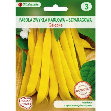 Nasiona warzyw GALOPKA Fasola zwykła karłowa W. LEGUTKO