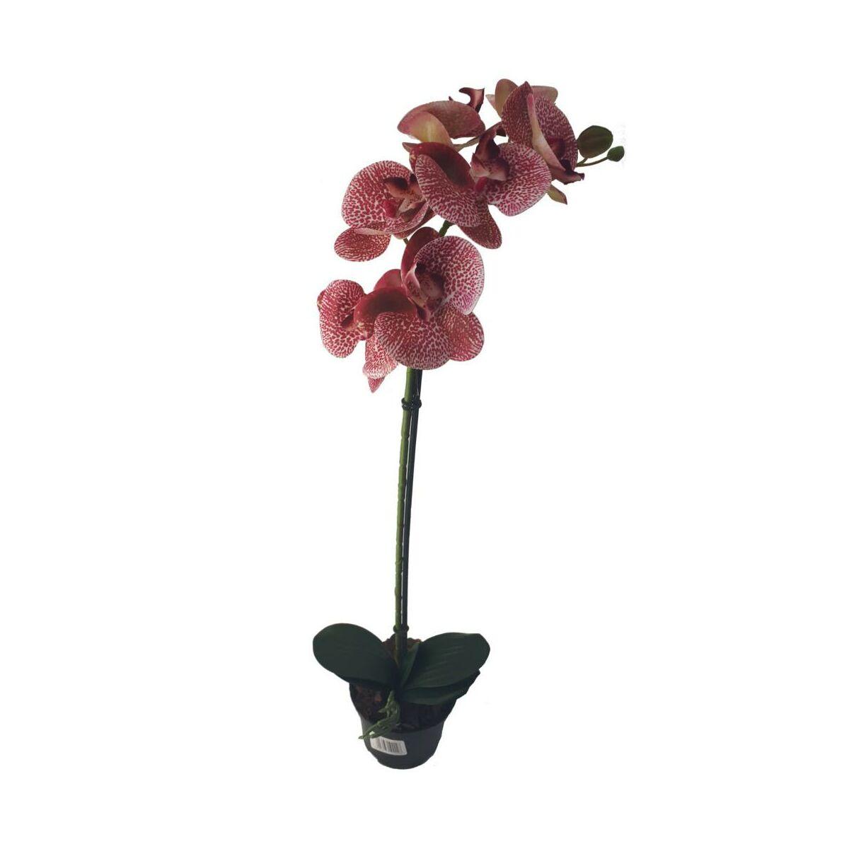 Storczyk Sztuczny W Doniczce 80 Cm 1 Ped Sztuczne Kwiaty W Atrakcyjnej Cenie W Sklepach Leroy Merlin
