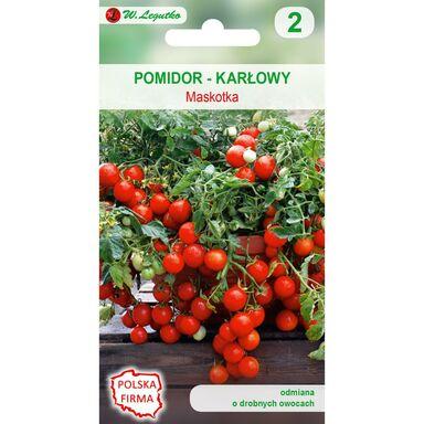 Nasiona warzyw MASKOTKA Pomidor gruntowy karłowy W. LEGUTKO