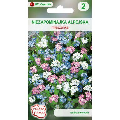 Nasiona kwiatów MIESZANKA Niezapominajka alpejska W. LEGUTKO