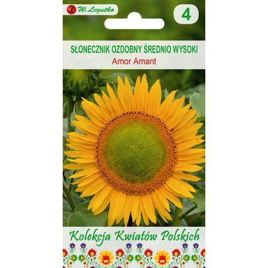 Słonecznik ozdobny AMOR AMANT nasiona tradycyjne 1 g W. LEGUTKO