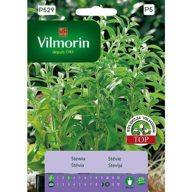 Stewia nasiona tradycyjne 0.01 g VILMORIN