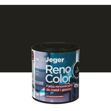 Farba renowacyjna Reno Color do mebli i glazury 0.45 l Czarny Jeger