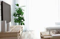 Jeden salon, wiele możliwości, czyli jak wykorzystać przestrzeń w salonie