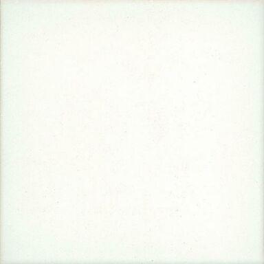 Gres szkliwiony ALASKA WHITE MATT 10 X 10 EGE SERAMIK