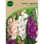 Mieczyk Old English MIX 25 szt. cebulki kwiatów GEOLIA