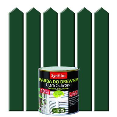 Farba do drewna ULTRA OCHRONA 0.5 l Baskijski Zielony SYNTILOR