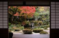 Jak założyć ogród w stylu japońskim?
