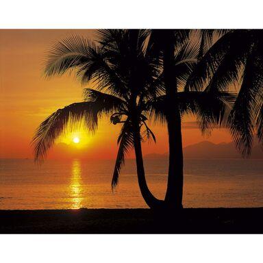 Fototapeta PALMY BEACH SUNRISE 368 x 368 cm