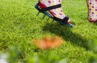 Kalendarz ogrodnika – kwiecień